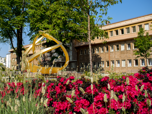 Stadshusplan med blommor i närbild. Skulptur ses framför kommunhuset.